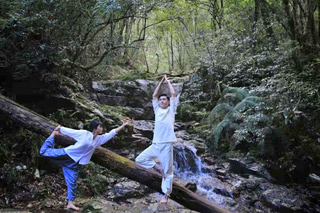 """""""森林瑜伽""""让人与自然更和谐"""