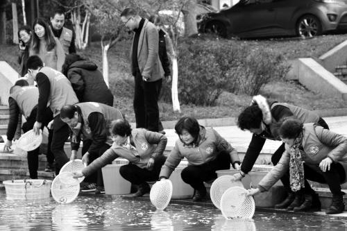 鱼苗放生助力治水