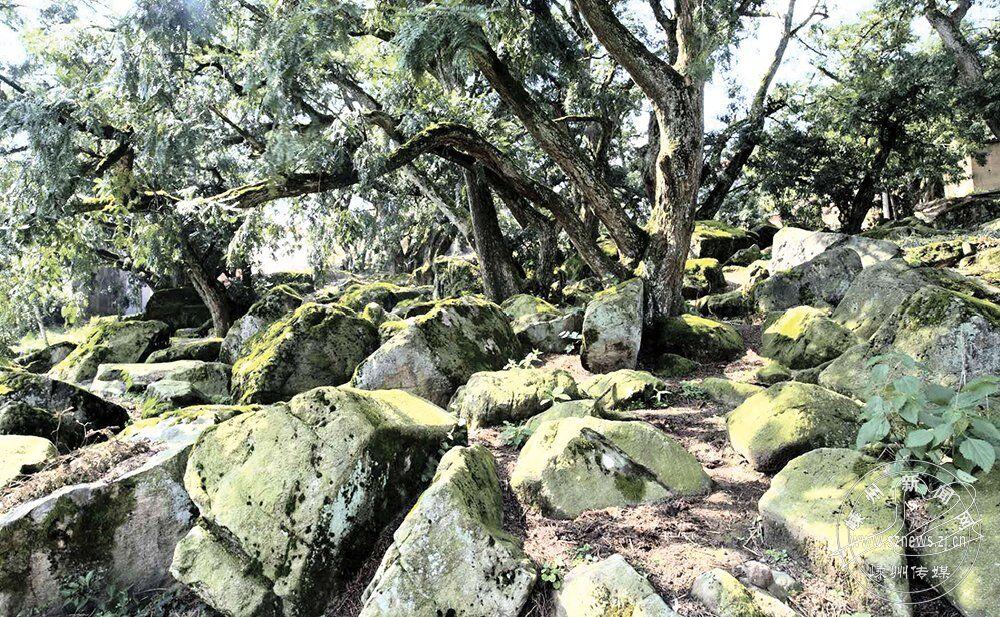 白雁坑成全国首个地质文化村