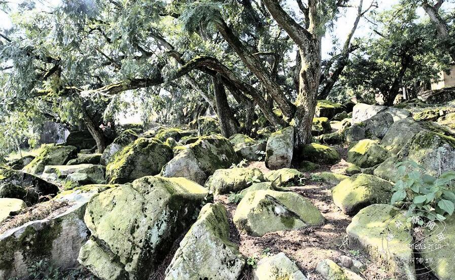 嵊州市白雁坑村成为全国首个地质文化村
