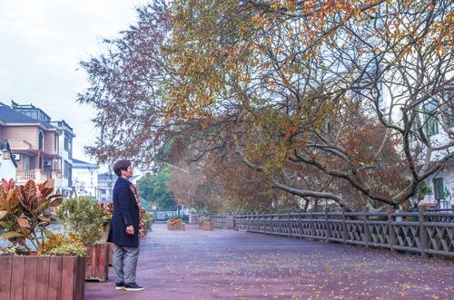 冬日里,与雅金村来场浪漫之约
