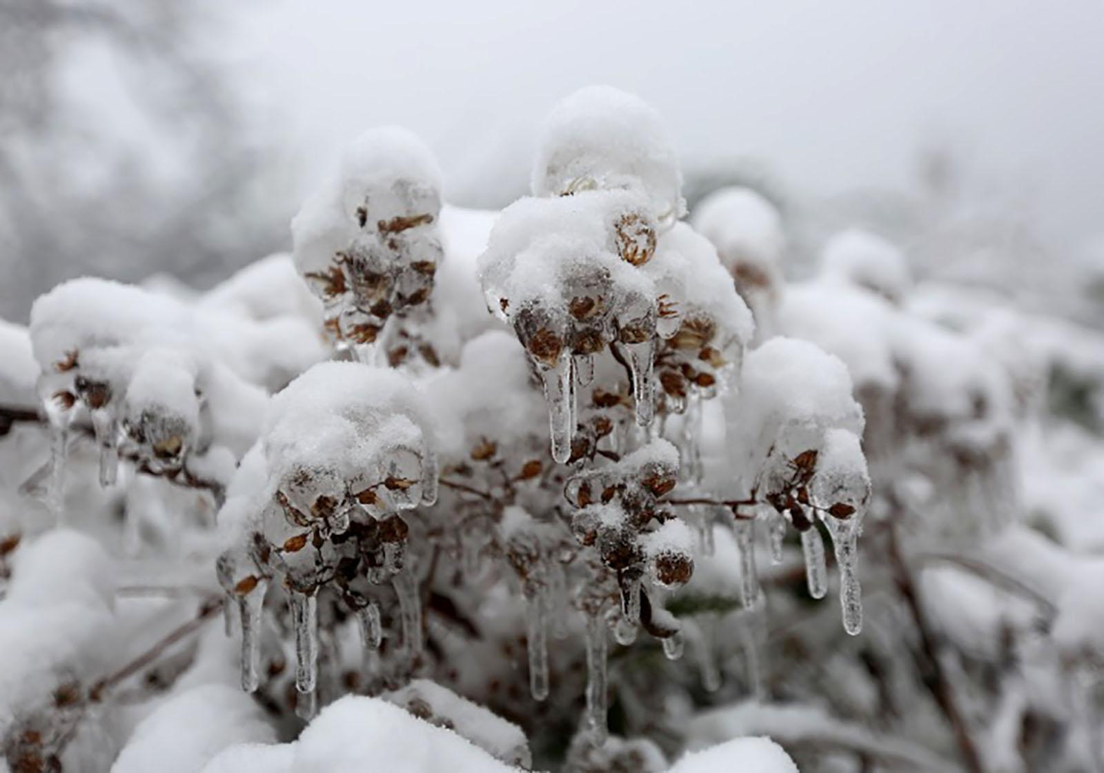 快看,常山的雪景是多么迷人!