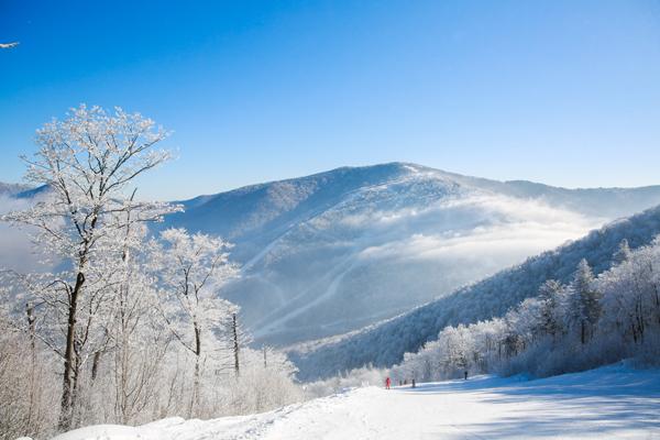 雾凇、滑雪、温泉、美食……这里竟然齐了