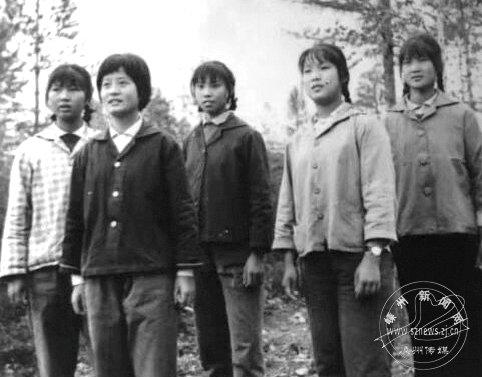 """48年再聚首,支边知青追忆""""芳华""""岁月"""