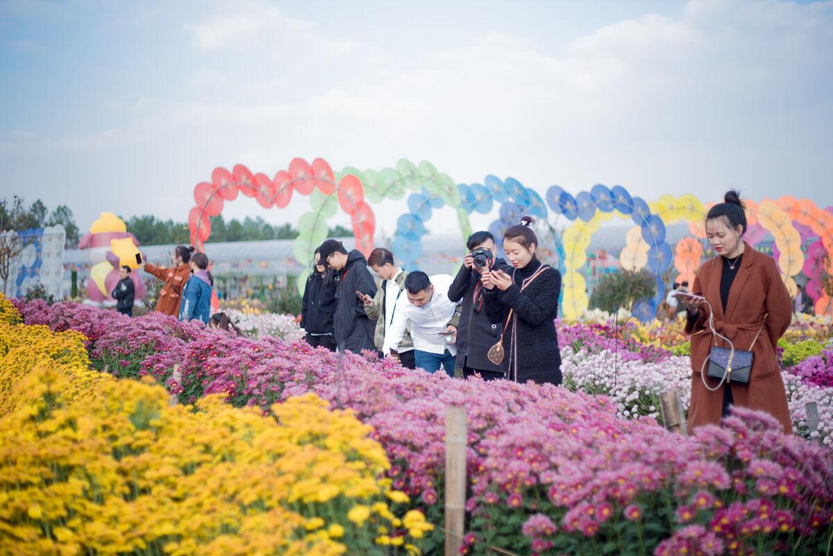 春节长假不走远 金东旅游嗨不停
