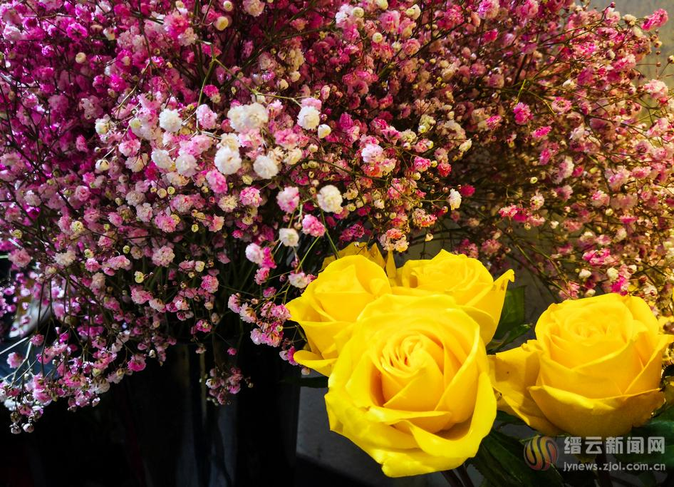 石城有爱 鲜花飘香