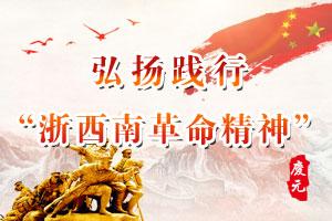 """弘扬践行""""浙西南革命精神"""""""