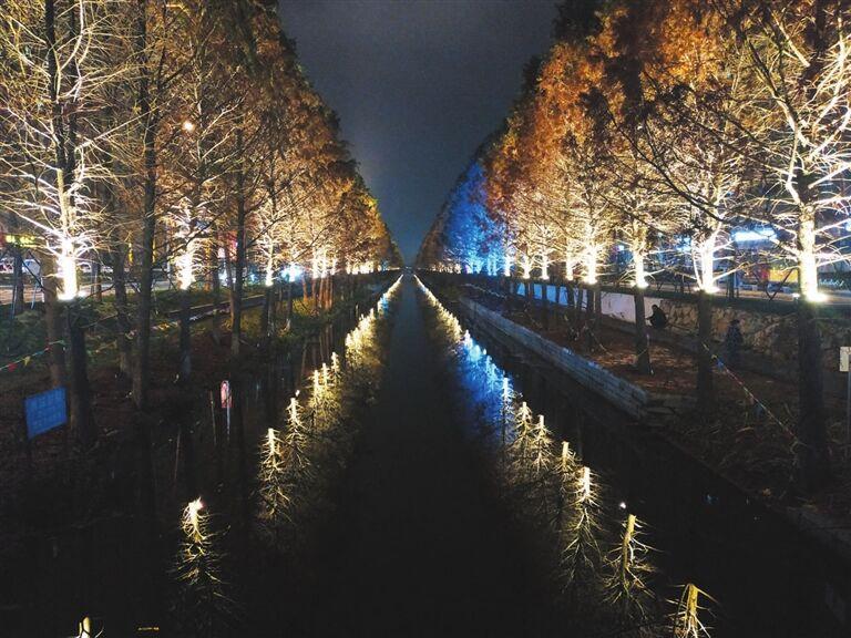 双水河夜景美如画