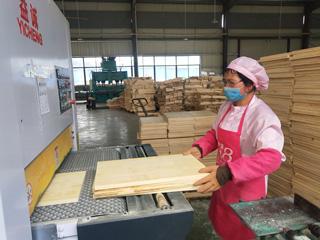 竹木砧板生产忙