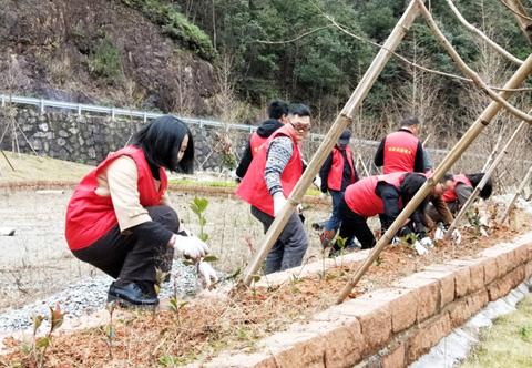 提升水利风景区形象 党员志愿者在行动