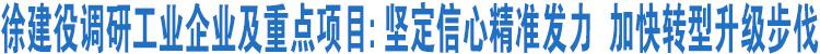 徐建役调研工业企业及重点项目