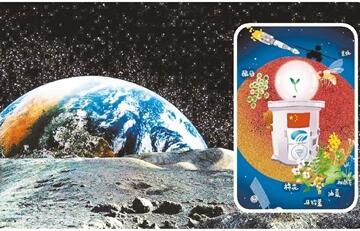揭秘嫦娥四号生物实验:曾考虑搭载乌龟