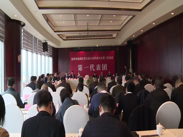 瓯海区领导参加人大分组审议政府工作