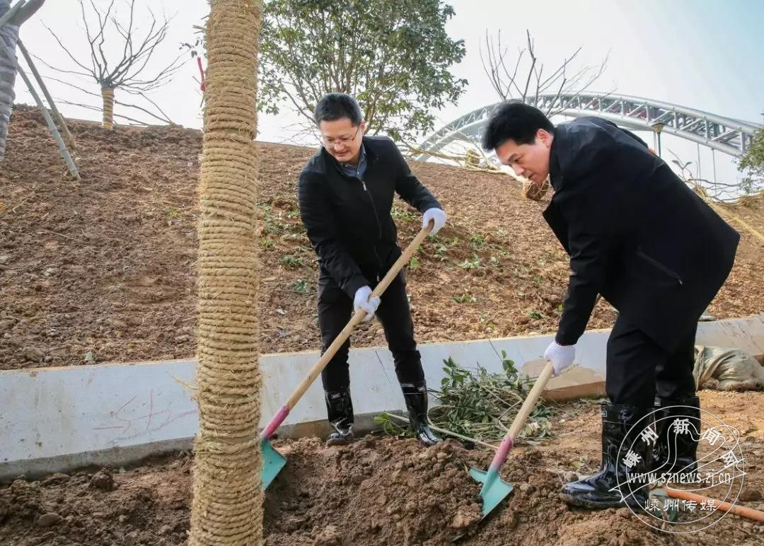 市领导和干部群众一起参加义务植树活动