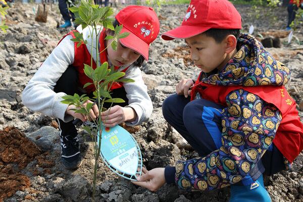 楚门?#21644;?#21592;青年¡¢巾帼志愿者植树护绿在行动