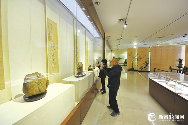 100余件观赏石精品展出受欢迎