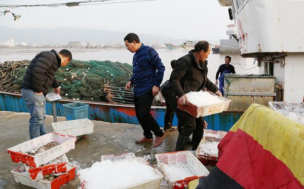 渔民春汛获丰收