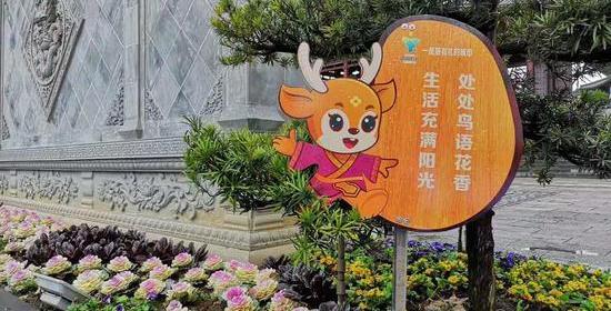 """""""南孔圣地""""問禮:承古啟今當推""""衢州有禮"""""""
