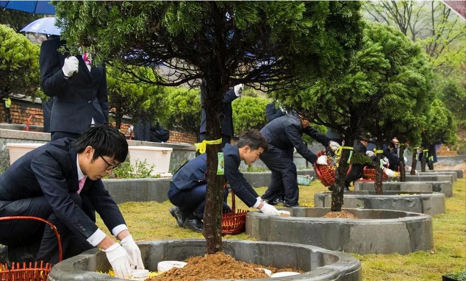 蒼南省級樹葬試點落成暨首屆聯合樹葬儀式啟動