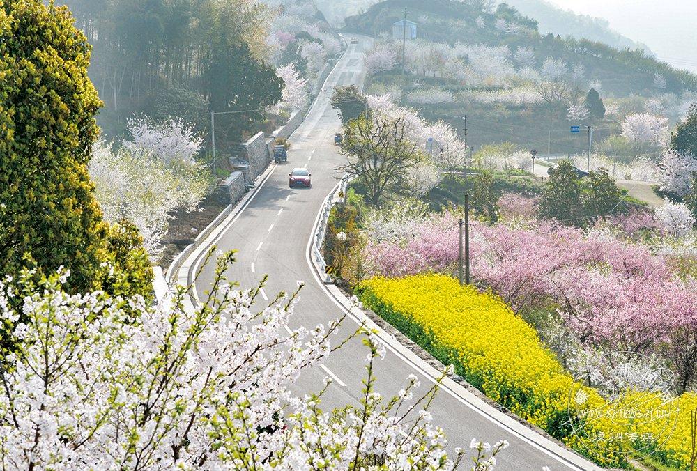 乡村公路美如画【高清】