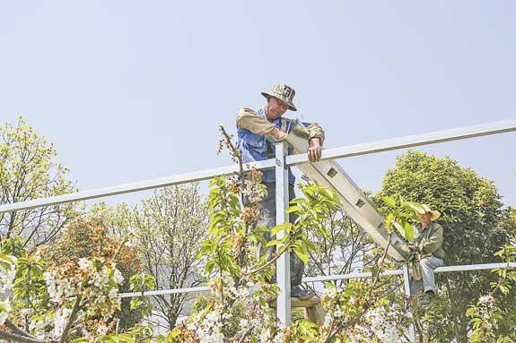 设施农业增产增效