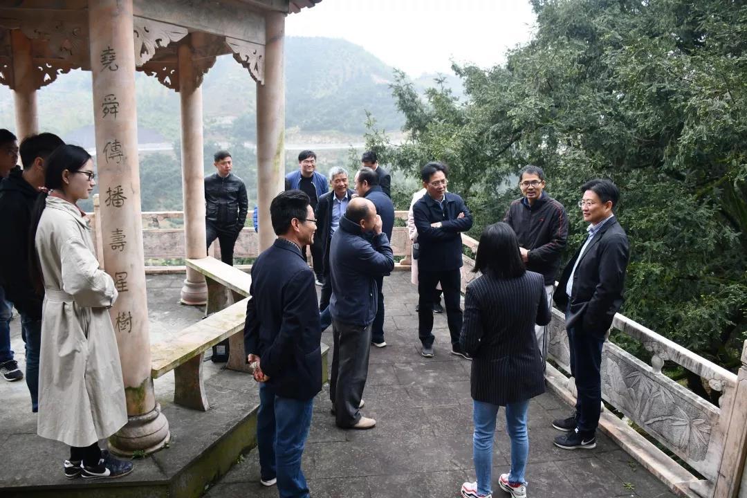 市政协视察香榧产业发展情况