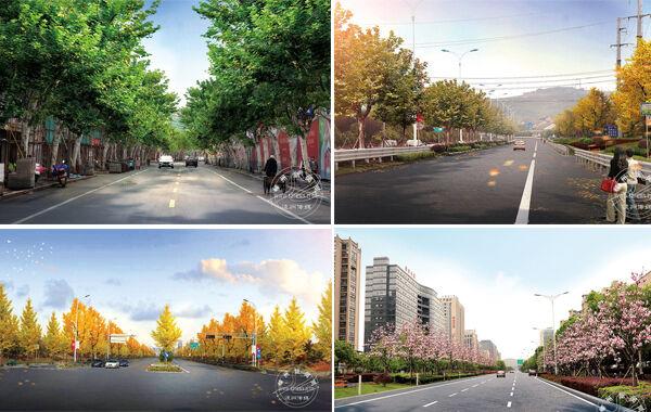 我市打造精品绿化景观路
