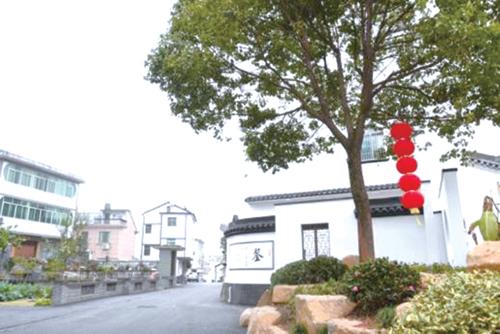 塘雅镇规模调整迸发发展新活力