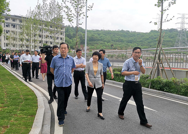 市人大常委会视察新建学校建设运行情况