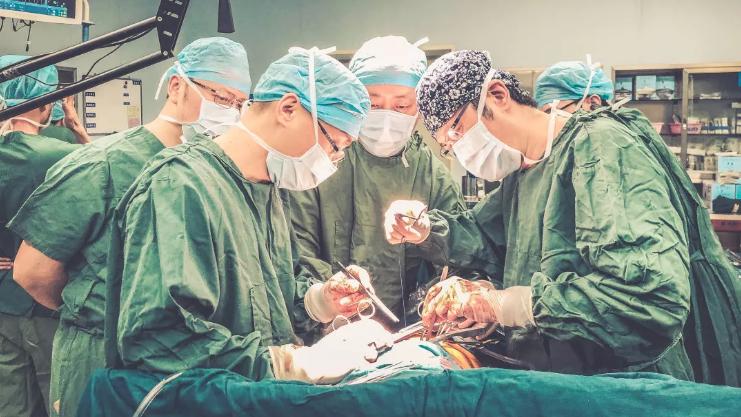 """12大器官移植手術一天完成:15小時""""生命接力"""""""