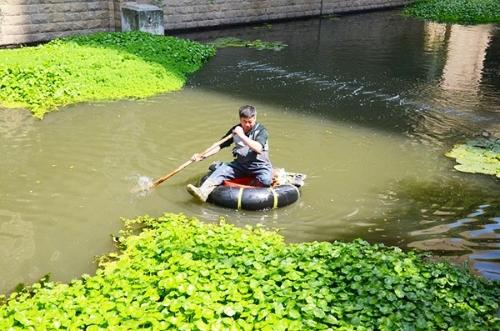 北侖:退休老人九年義務維護河道