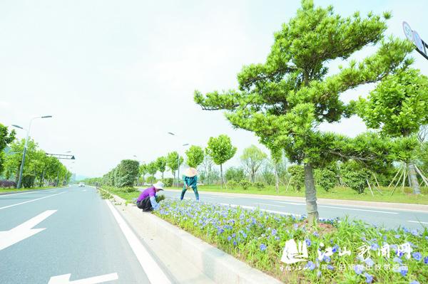景观绿化美江滨