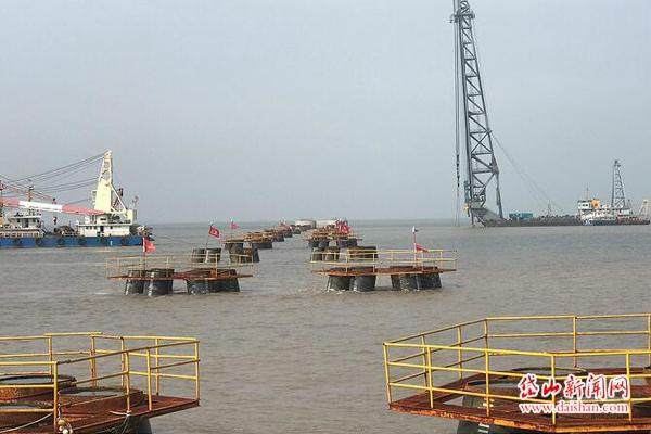 中交二航局宁波舟山港主通道4标1316根大直径超长钢管桩全部施工