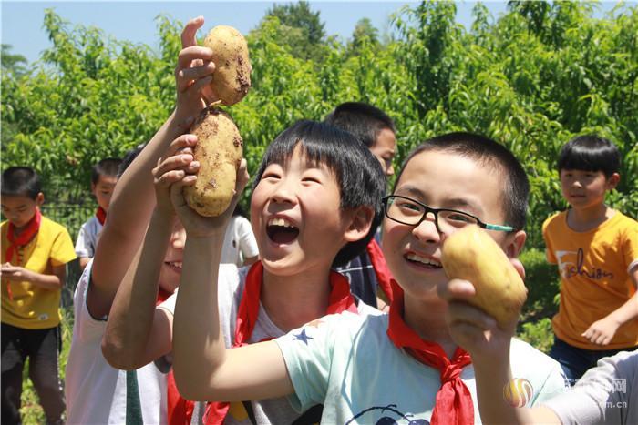 体验农夫生活 收获甜蜜果实