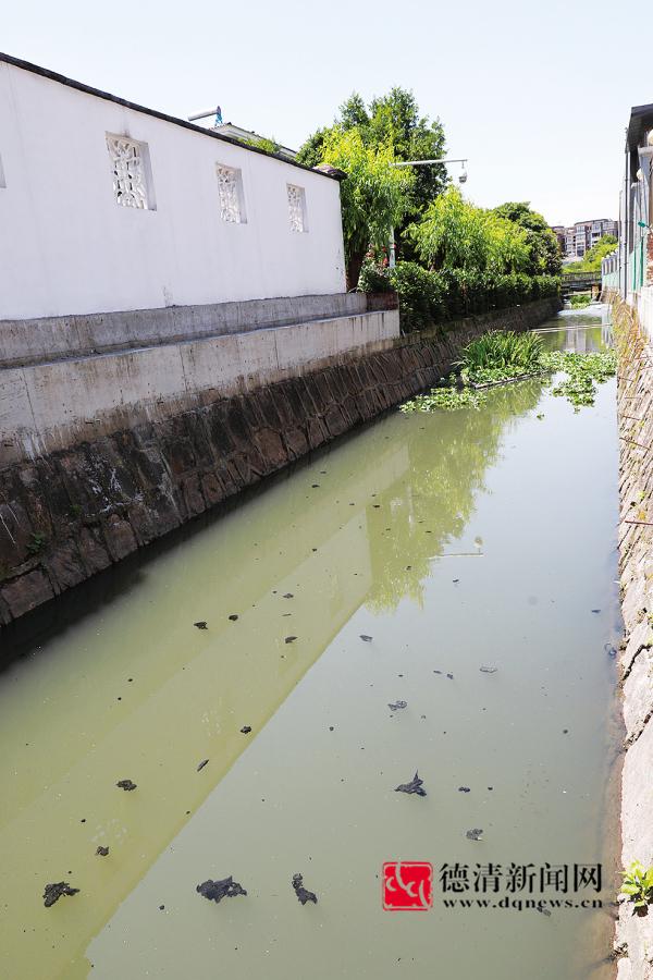 五龙小区水渠已进行清洁