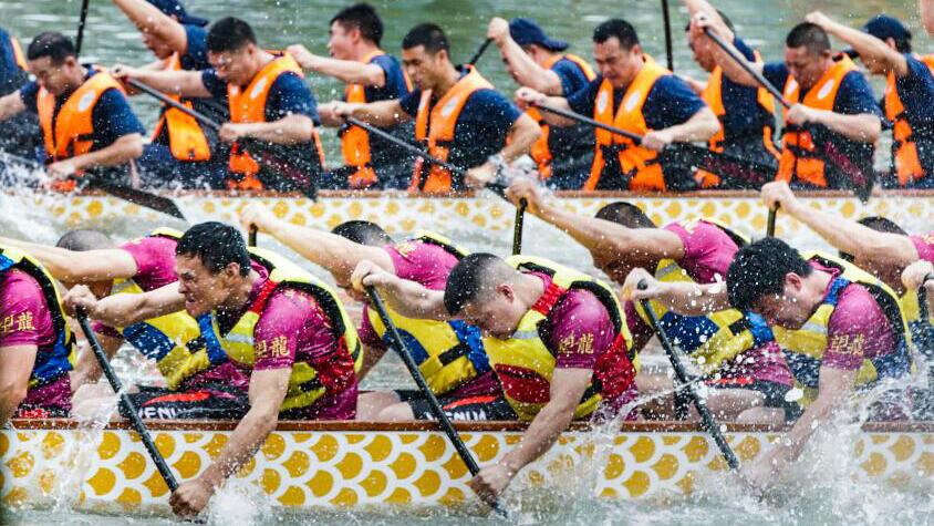 温州:湿地赛龙舟迎端午