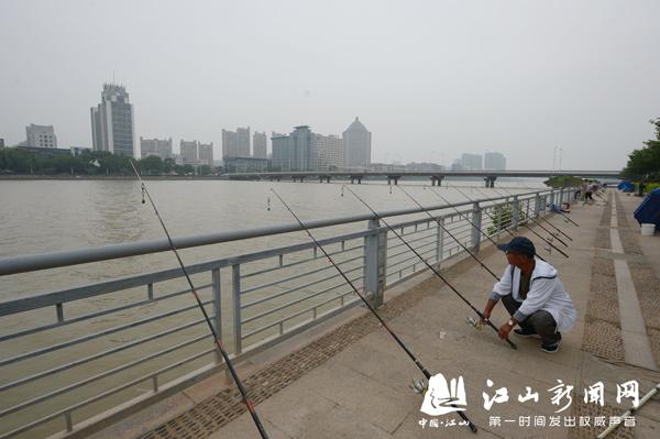 江滨钓鱼热