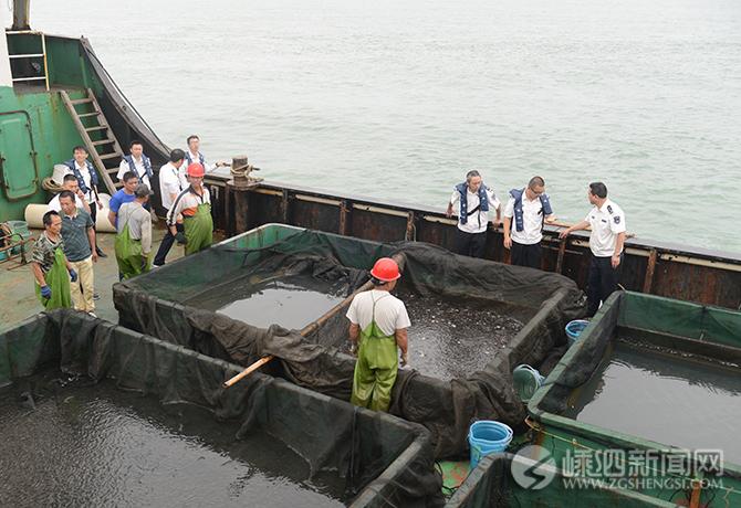 我县放流201万尾鱼苗 助力海洋资源修复