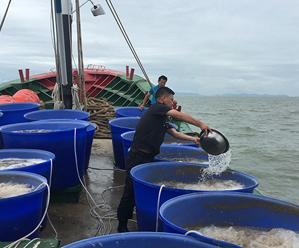 渔业资源增殖放流活动