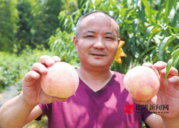 我县翠冠梨、水蜜桃上市