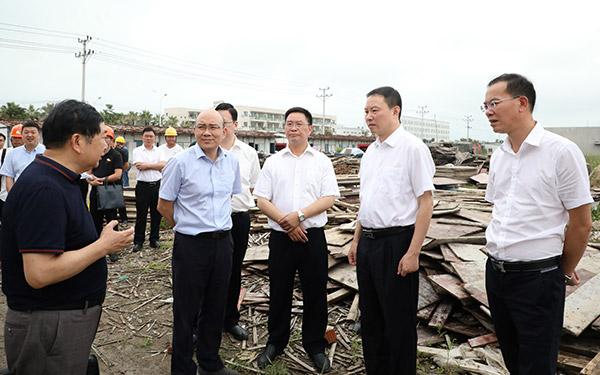 梅式苗在浙江头门港经济开发区调研