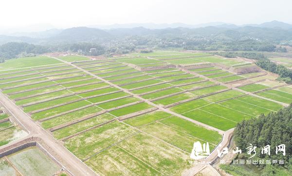 土地开发绿色成景