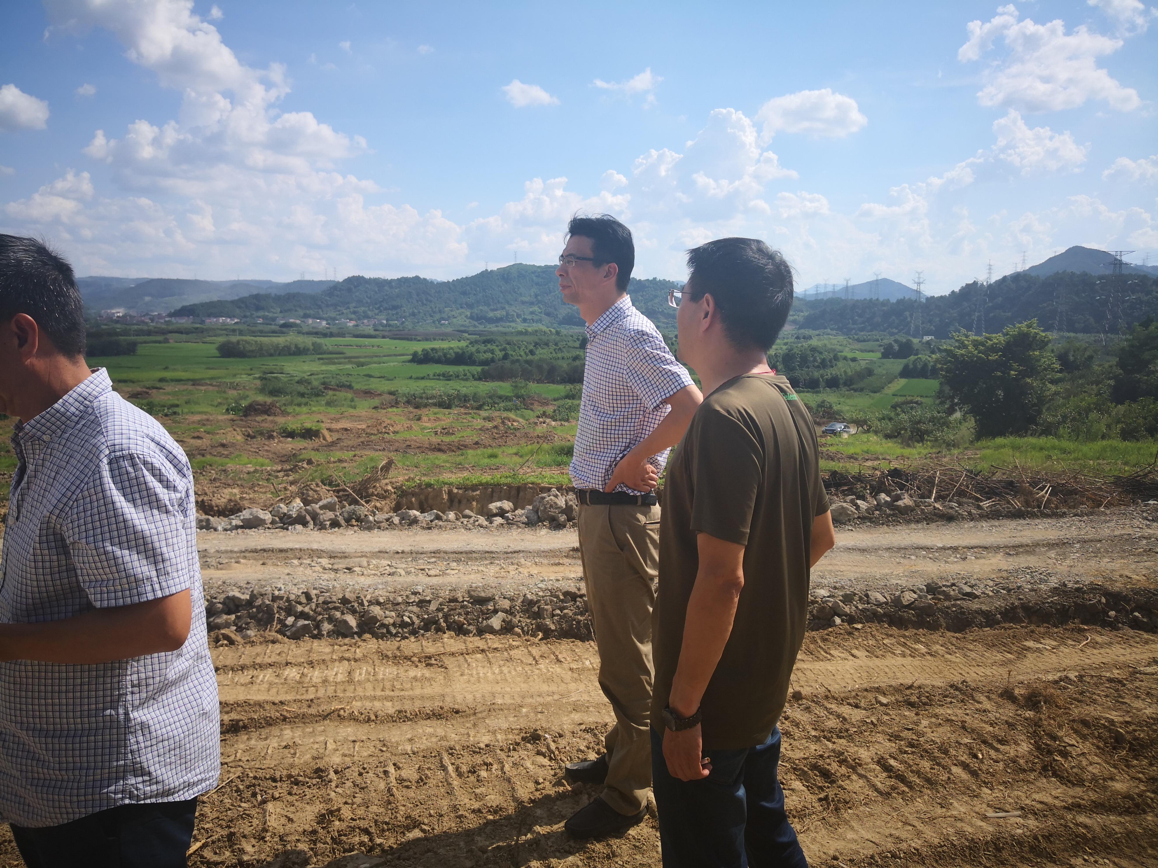 甘霖镇党委副书记、镇长余建生带队督查2019年甘霖镇苍岩村童家湾土地开发项目