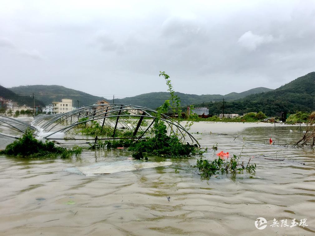 最新丨台风把玉环打惨了!初步统计:受灾30.98万人,直接经济损失1.7亿元 !