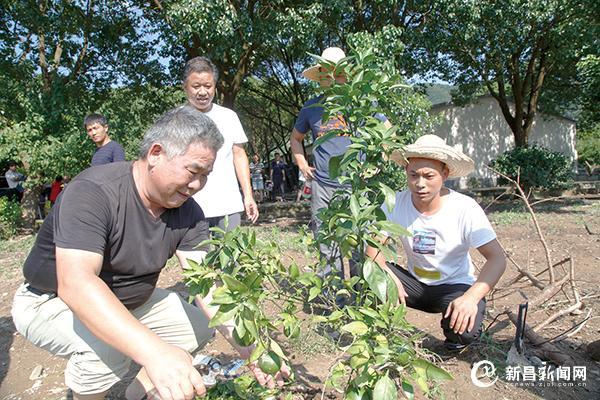 农技人员深入田间指导农户灾后自救
