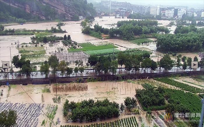 县农业农村局同心聚力抗灾减灾、指导灾后恢复生产