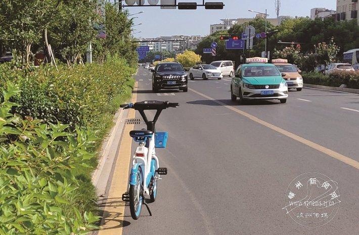 共享单车乱停乱放现象较多