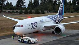 """波音787起飞后发动机喷碎片 罗马上空如下""""铁雨"""""""