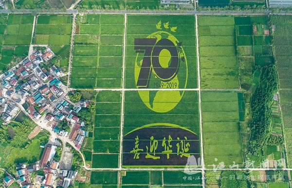 献礼新中国70华诞