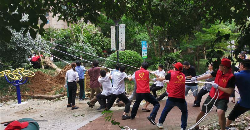 宁波:6万红马甲 抗台救灾中逆风而行的最美身影